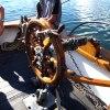 Helmi DockSide 5