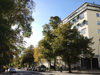 Kvarteren vid Fridhemsgatan