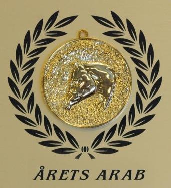 Jeenial ox får ett specialinrättat pris från Svenska Arabhästföreningen för gott Ambassadörskap!