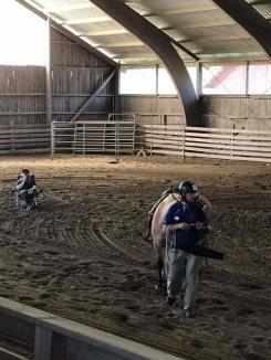 Inför publik visade vi hur vi introducerar en ny häst till Beridet bågskytte! Foto: K.Mellgren