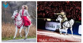 För tredje året i rad får Jeenial äran att representera det Arabiska Fullblodet på Sweden International Horse Show! Detta året, precis som förra, tillsammans med Nazira. Foto: Therese Hübner