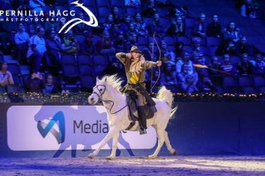 Horse Show är nogdet mest spektakulära man kan uppleva i Sverige - mycket publik och massor som händer runt omkring! Foto: Pernilla Hägg