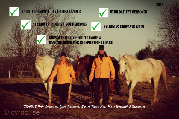 Beridet bågskytte är en officiell gren under Svenska Bågskytte Förbundet sedan den 1 januari 2016. Varmt välkommen till Akademin för Beridet bågskytte! För hästar och människor sedan 2012.