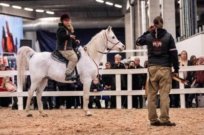 Team Jeenial ox pratar om bettlös ridning och träning med H3-metoden i Beridet båskytte på Sweden International Horse Show 2018.