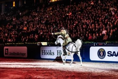 För andra året i rad representerade vi det Arabiska fullblodet tillsammans med Jeenial ox på Sweden International Horse Show! Foto: Therese Hübner