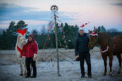 Ett utmanande år kräver en annorlunda gran.  Vi önskar er en fridefull jul, ta hand om er! /Team DHA Foto: cyroo.se