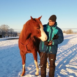 Human to Horse