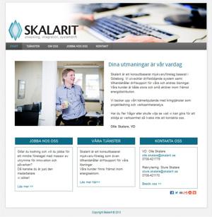 Hjälp med ny hemsida för IT & mjukvaruföretaget Skalarit  i Göteborg