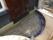 Formning armering och gjutning av ny trappa, observera rören till LED-belysningen.
