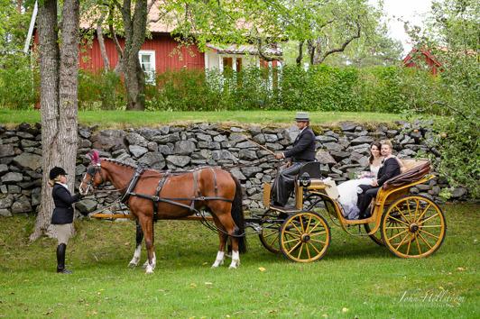 Fotograf, John Hellström, http://www.johnhellstrom.se/