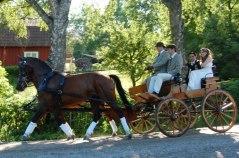 Bröllopskörning med lantlig klädsel