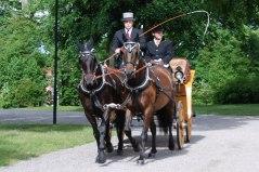 Bröllop, högtidlig klädsel och Viktoriavagn