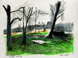 Grön vinter
