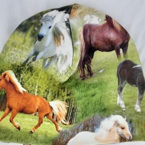 Ponny hästar