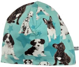 Hundar turkos - 34-38 cm. Ca: 0-3 månader