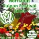 Presentkort: Norrlands Tulpan Festival 2020 med övernattning på hotell