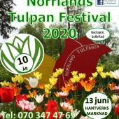 Presentkort: Norrlands Tulpan Festival 2020