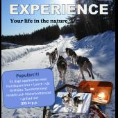 Presentkort: Arctic experience
