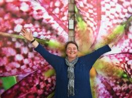 TULPANRESA TILL HOLLAND 2021 med Carolina Visser - Tulpanresa
