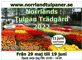 Presentkort: Norrlands Tulpan Trädgård 2022 - Presentkort Norrlands Tulpan Trädgård