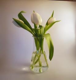Vas Blomma - Blomma Stor