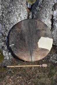 Hårig trumma . -