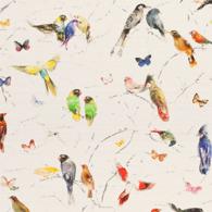 Birds of Paradise Multi PG8-M