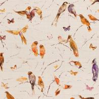 Birds of Paradise Orange PG8-M