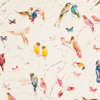 Birds of Paradise Rosa PG8-M