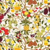 Fruktträd PG10