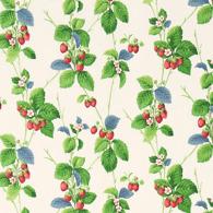 Summer Strawberries PG6 M