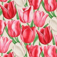 Early Tulips Röd PG7 L
