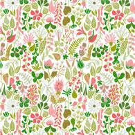 Herbarium Rosa PG6