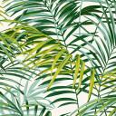 Palm Springs Grön PG5
