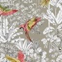 Parroquets Natur PG4
