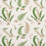 Ferns Grön PG10