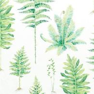 Fernery-Grön-PG6