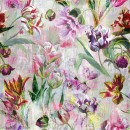 Tulipa Stellata Fuchsia XL PG9