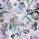 Tulipa Stellata Violet XL PG9
