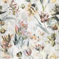 Tulipa Stellata Birch XL PG9