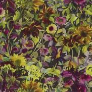 Indian Sunflower PG8