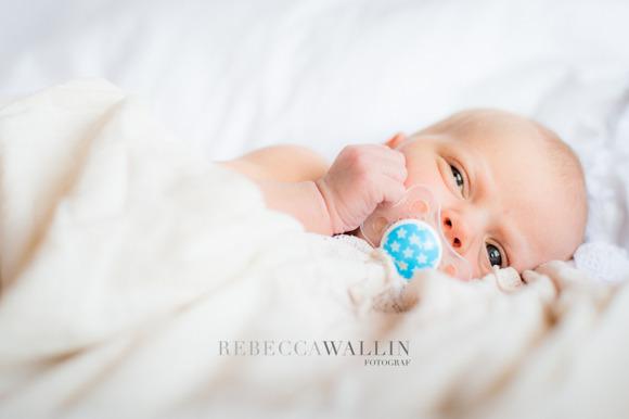 www.rebeccawallin.com
