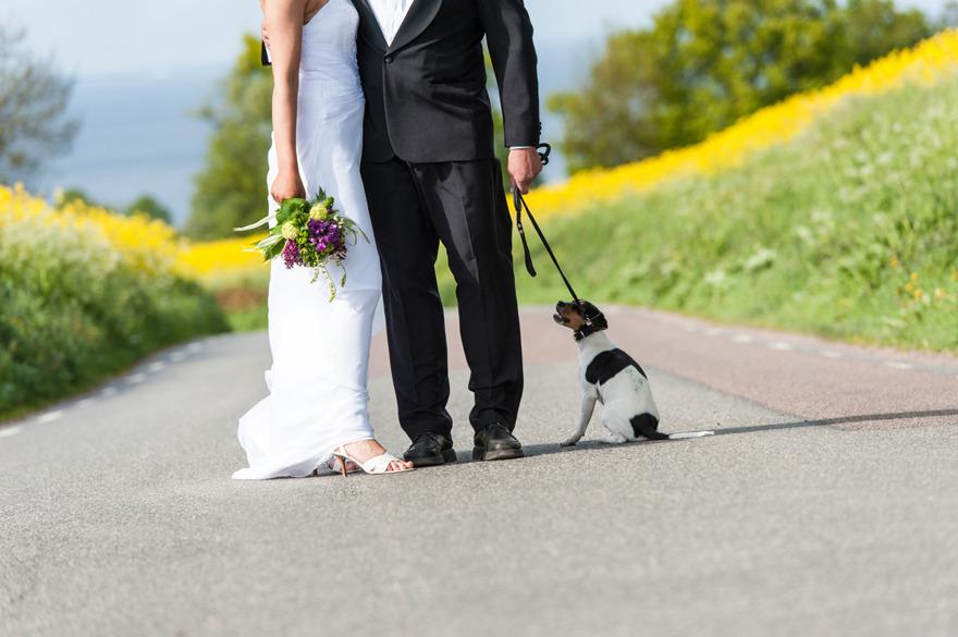 Österlenbröllop utanför Kivik. Fotograf Rebecca Wallin