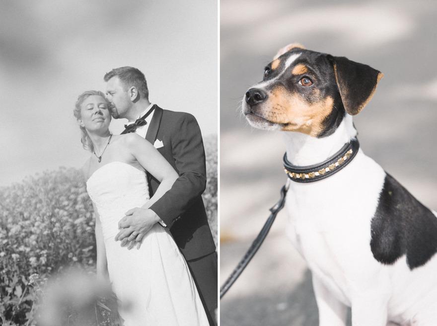 Österlenbröllop. Fotograf Rebecca Wallin