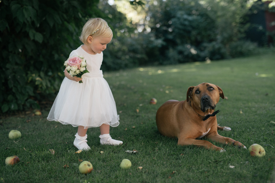 Brudnäbb och hund som best man.