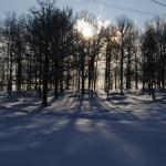 Underbara vinter