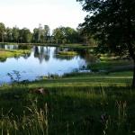 Våtmarken strax intill huset