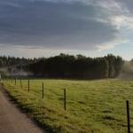 Härliga promenadvägar
