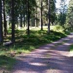 Promenadväg