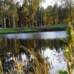 Våtmark_2